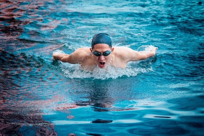 蝶泳游泳行动 免版税库存照片