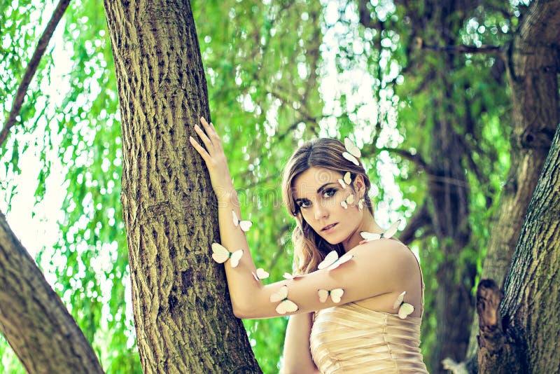 蝴蝶神仙在树 库存图片