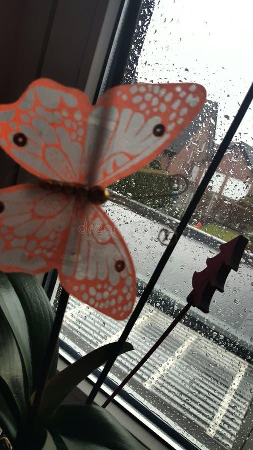 蝴蝶雨绿色自然玻璃 库存照片