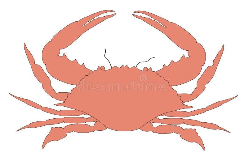 螃蟹动物的图象 向量例证