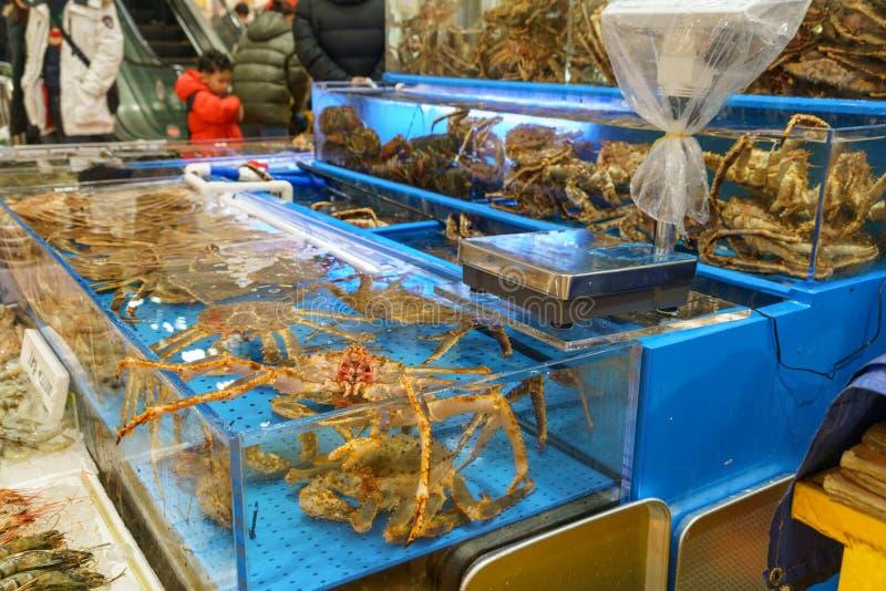 螃蟹在池塘 免版税库存照片