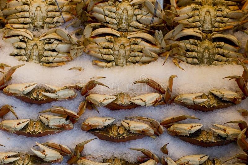螃蟹市场矛 免版税库存图片