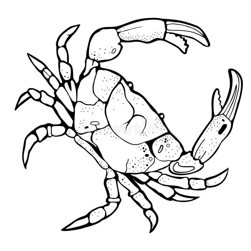 螃蟹黑剪影 皇族释放例证