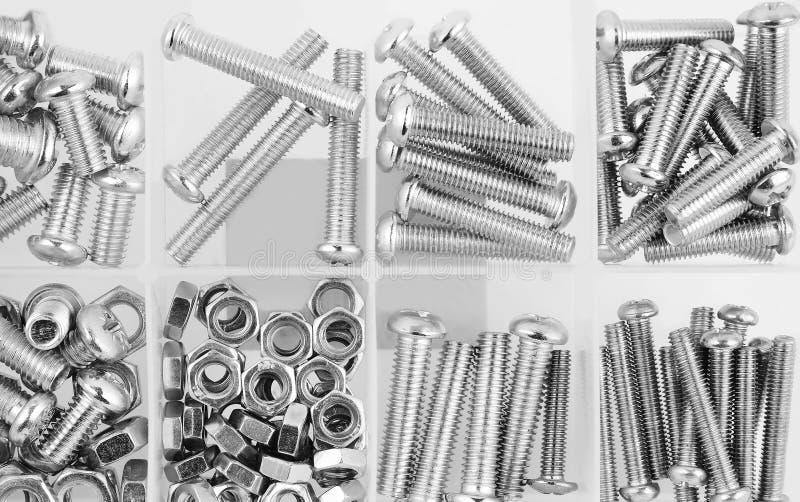 螺栓和坚果在塑料组织者箱子 库存照片