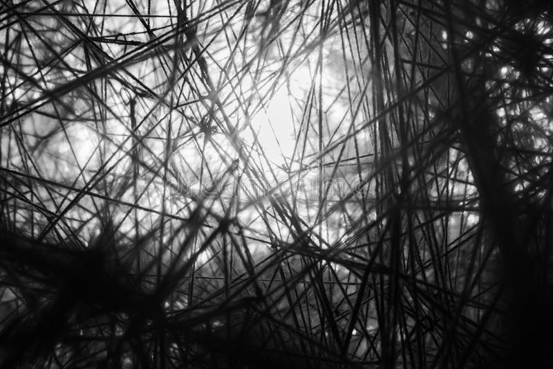 螺纹的抽象照片  免版税库存图片