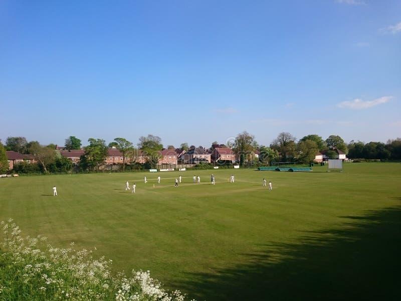 蟋蟀比赛在一家俱乐部的在约克英国 库存照片