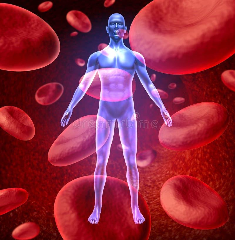 血液循环人 库存例证