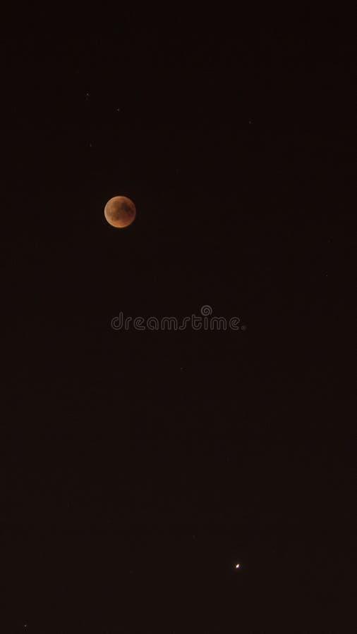 血液月亮和金星 免版税库存图片