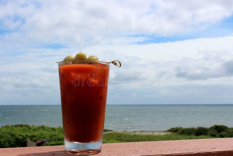 血玛莉酒混合和橄榄诱惑饮料在变冷的玻璃在栏杆由水的边缘 库存照片