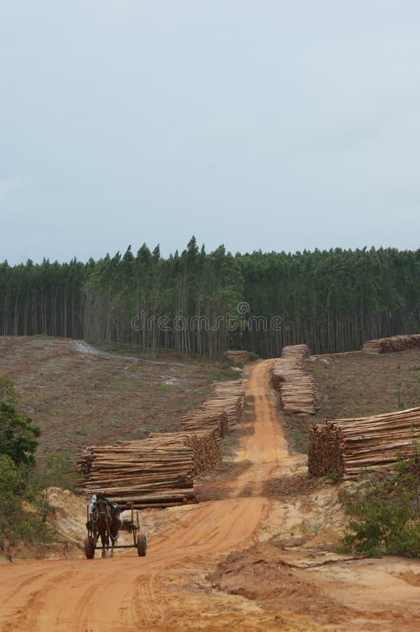 行业木头 免版税库存图片