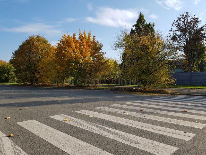 行人交叉路在秋天在晴天 免版税库存照片