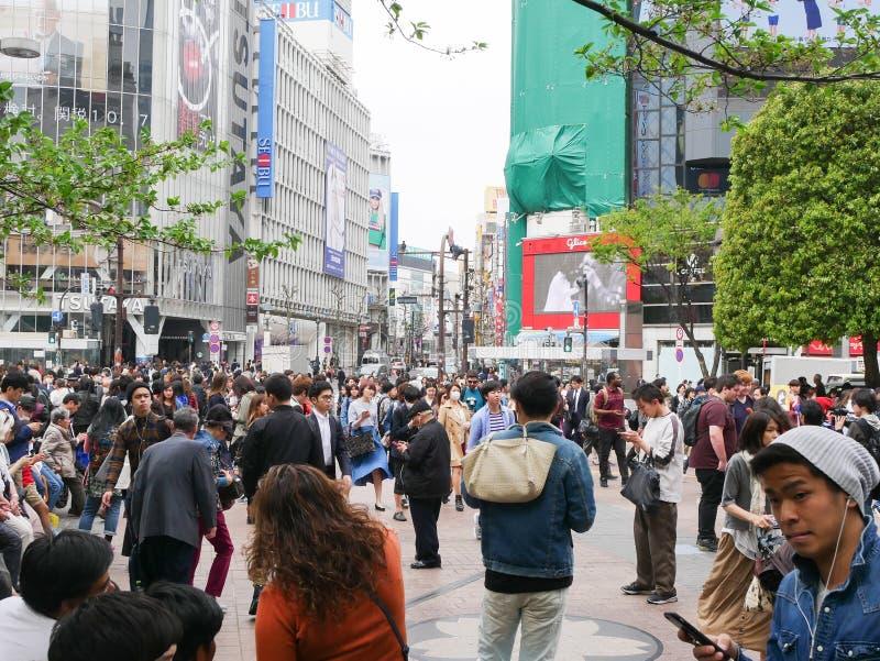 行人穿越道在涩谷东京日本 库存照片