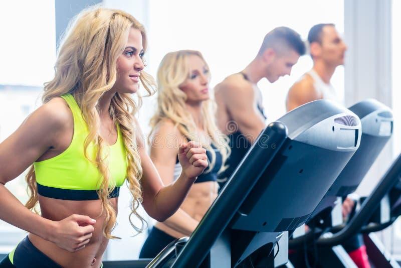 行使在健身健身房的踏车小组 免版税库存照片