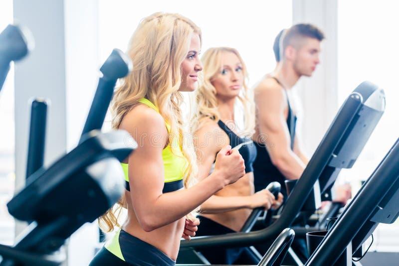 行使在健身健身房的踏车小组 库存照片
