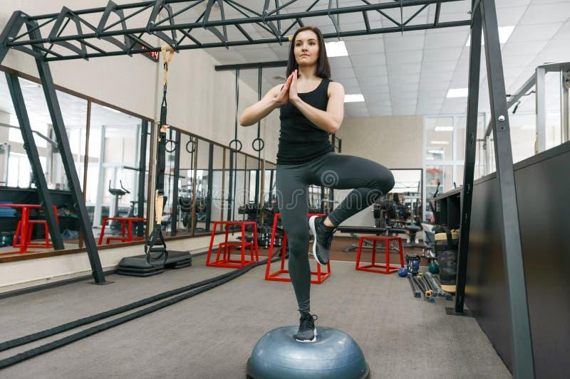 行使在现代体育健身房的机器的年轻运动妇女 健身,体育,训练,人们,健康生活方式概念 库存图片
