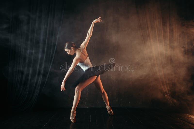 行动的,在阶段的舞蹈训练芭蕾舞女演员 库存图片