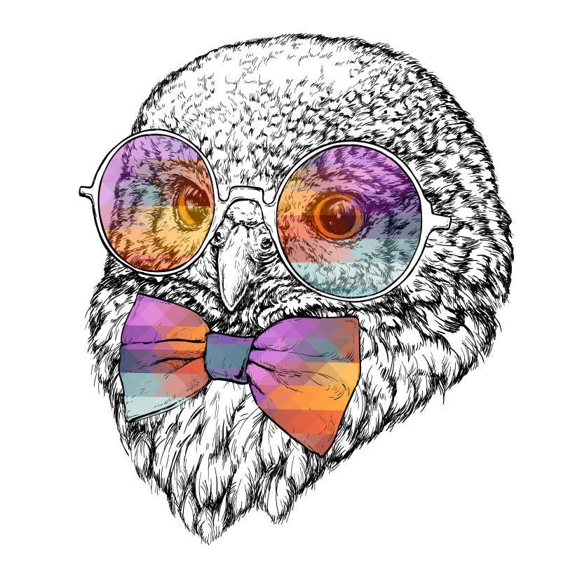 行家猫头鹰的手拉的时尚例证与圆的太阳镜的 向量例证