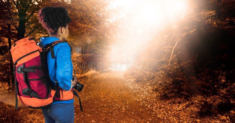 行家运载的背包和举行照相机背面图,当站立在森林里时 图库摄影