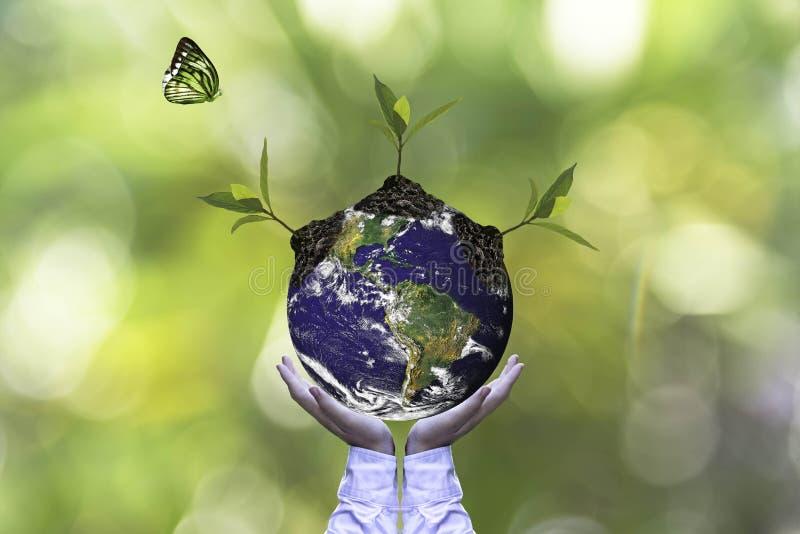 行星和树在人移交绿色自然生态,保存地球概念 库存例证
