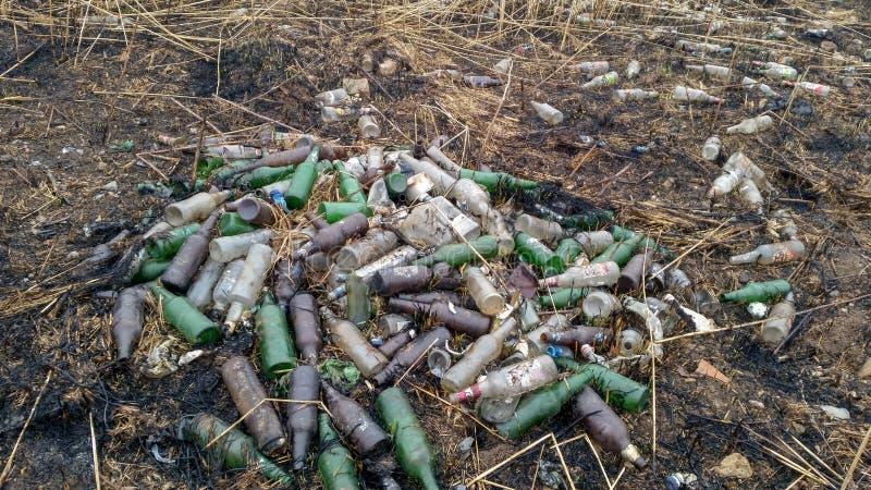 E 行星地球的生态问题 垃圾在室外休闲地方,瓶 库存照片