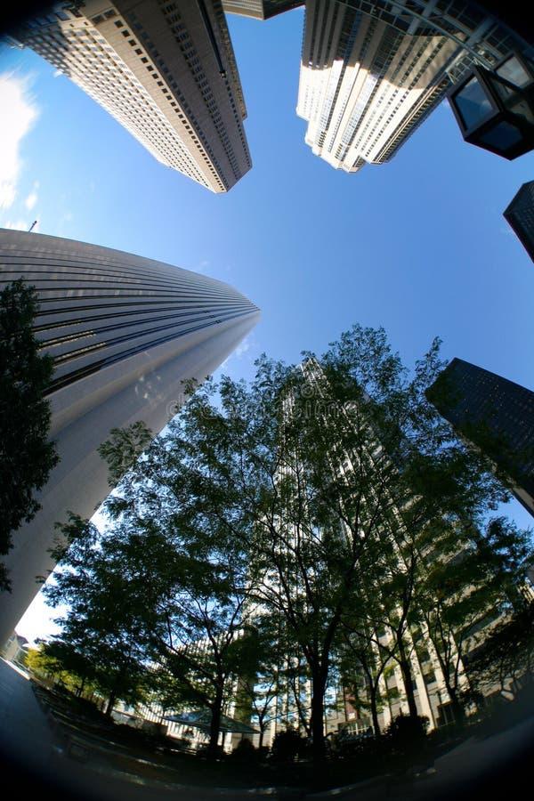 街市摩天大楼 免版税库存图片