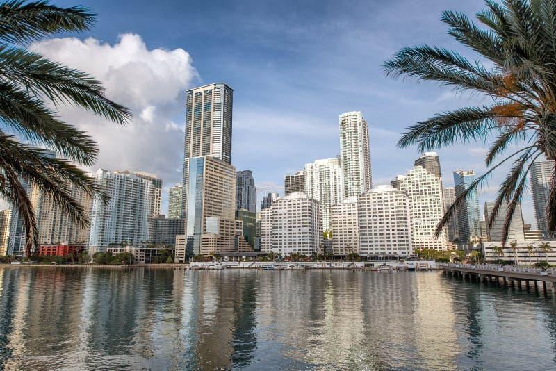 街市迈阿密地平线和大厦反射从Brickell K 免版税图库摄影