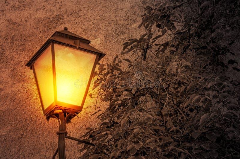 街灯发光的光 免版税库存图片