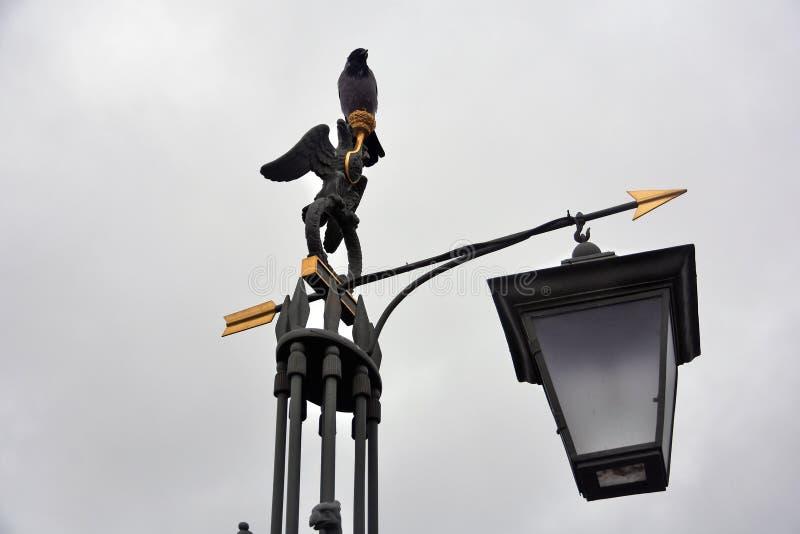 街灯在圣彼德堡 对彼得和保罗堡垒的入口 免版税库存图片