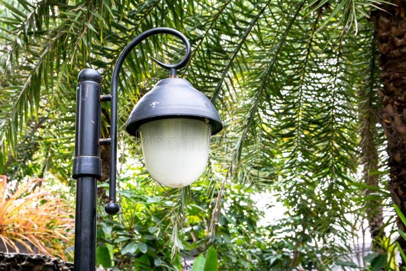 街灯岗位,岗位灯在公园 库存图片