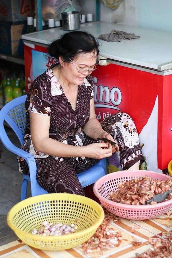街边小贩在越南 库存图片