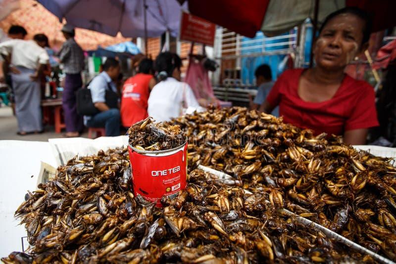 街道人生的仰光,缅甸 免版税库存图片