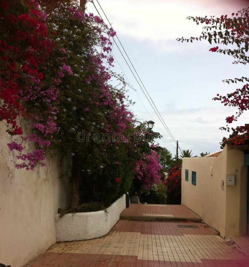 街道在普埃尔托德拉克鲁斯 免版税库存图片
