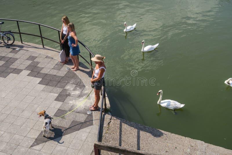 街道场面在梅茨,法国,Mosel河的房客的 库存图片