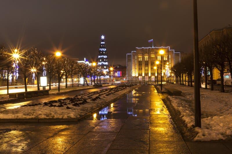 街道无产阶级专政 圣诞树和列宁格勒地区的大厦 圣彼德堡 免版税库存照片