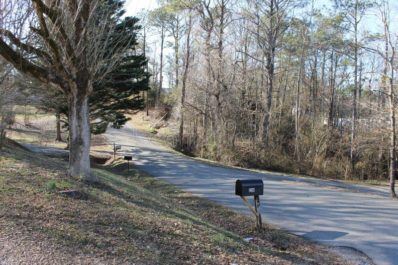 街道晴天和树 库存图片
