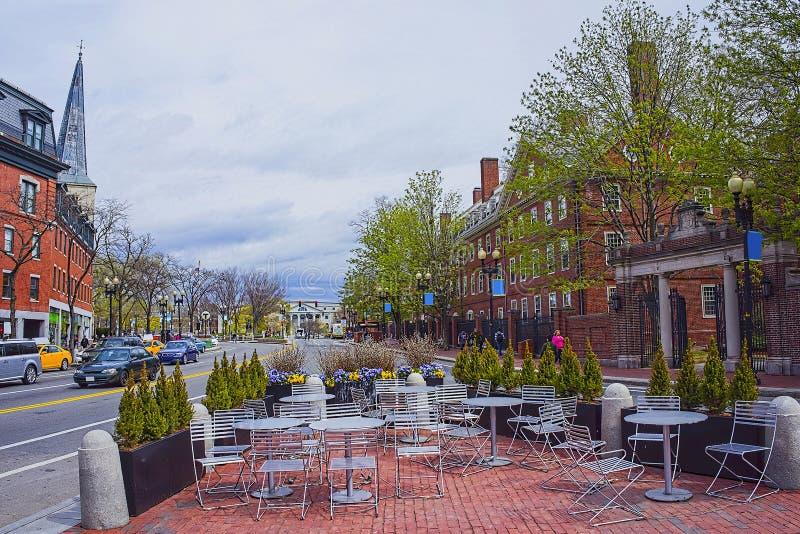 街道视图在哈佛大学地区在剑桥 免版税图库摄影