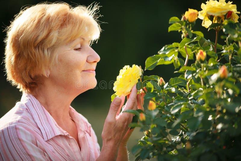 表示。与庭院玫瑰的资深妇女模型。春天 库存照片