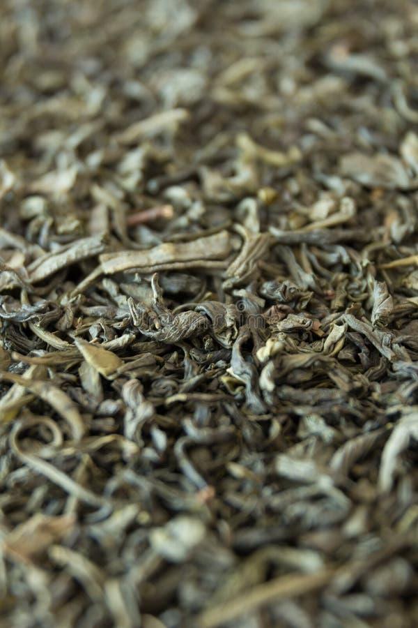 表面上的绿茶在透视 免版税库存照片