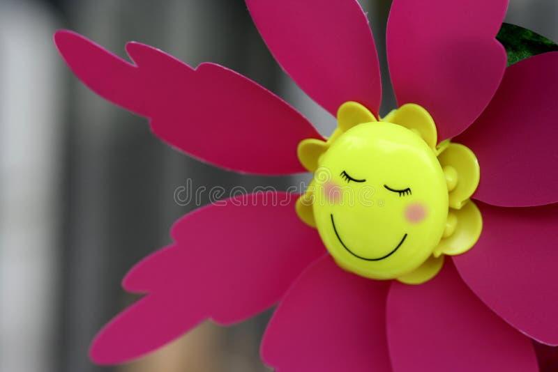 表面微笑 库存图片