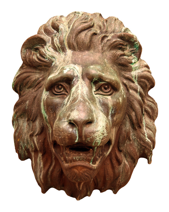 表面狮子 免版税库存照片