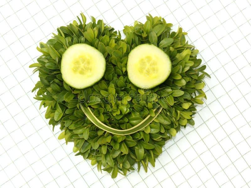 表面面带笑容蔬菜 免版税图库摄影