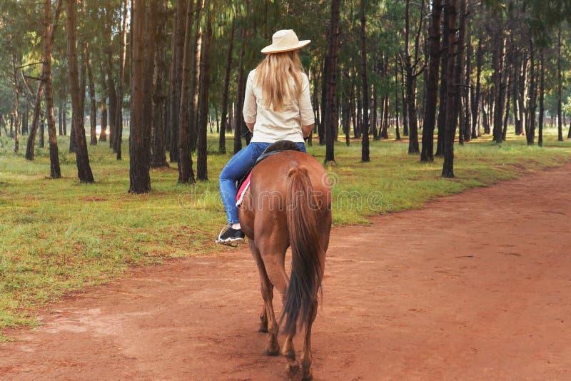 衬衣和草帽骑马褐色马的妇女在公园,被弄脏的树在背景,看法中从后面 免版税库存照片
