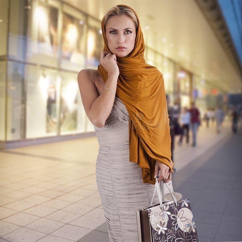袋子典雅的方式夫人购物 免版税库存图片