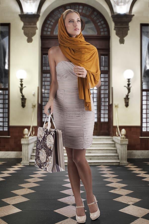 袋子典雅的方式购物妇女 库存图片