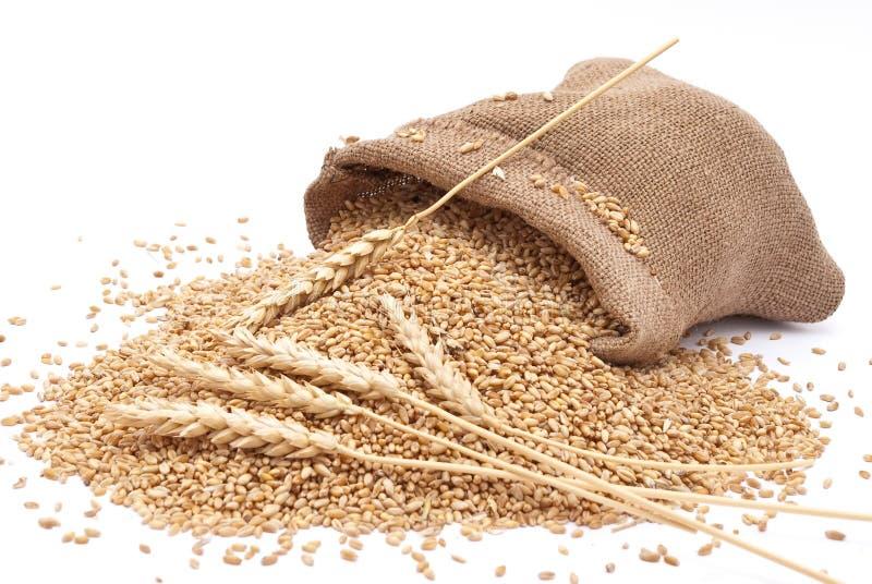 袋子分散麦子 免版税库存图片