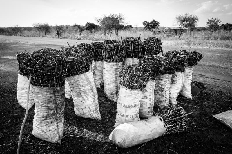 袋子沿路的木炭在非洲 库存照片