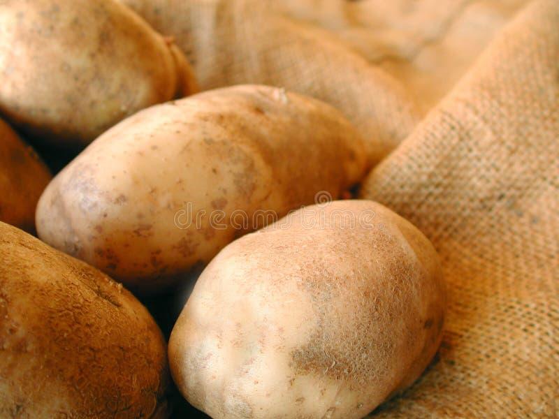 袋子粗麻布土豆 库存照片