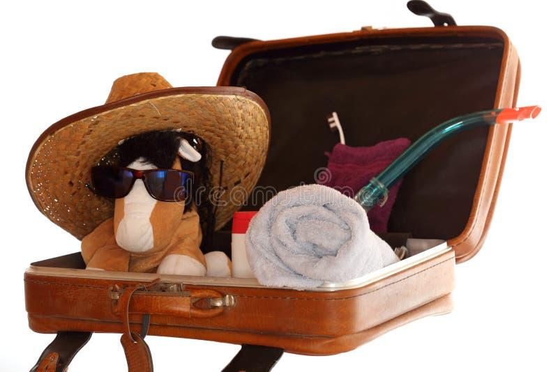 袋子被开张的旅行 库存图片