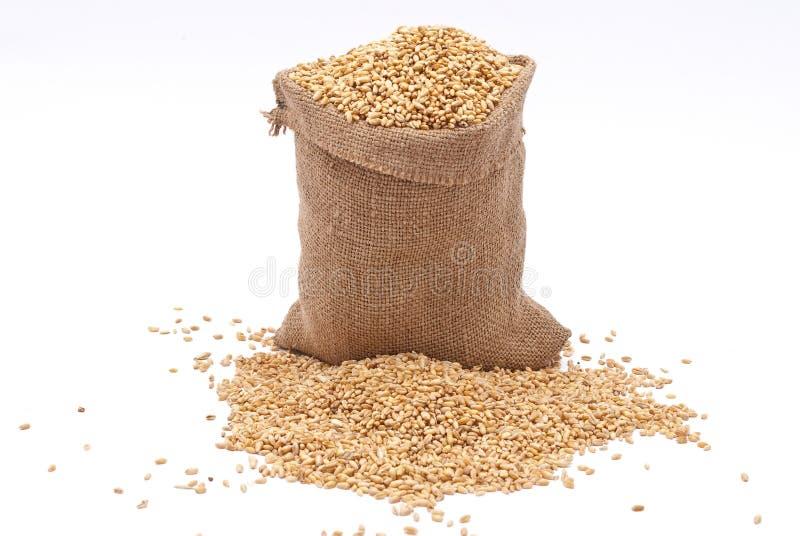 袋子谷物麦子 库存图片