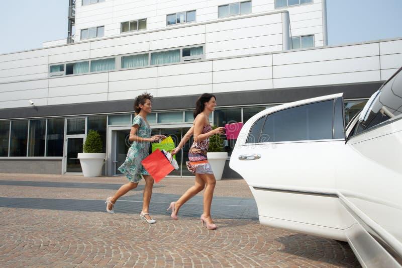 袋子购物的游人 免版税库存图片